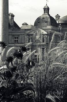 Shawna Gibson - Gardens