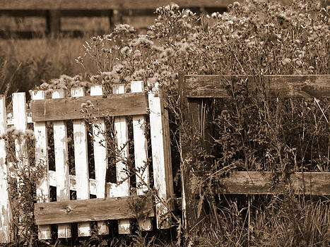 Gate by Kristal Kobold