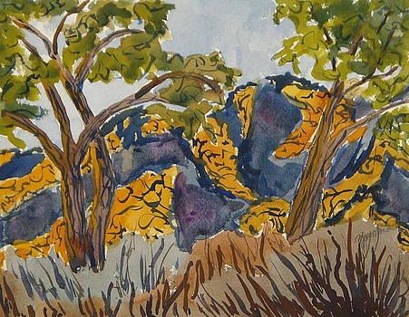 Gauguin Earth Rocks Dinosaur National Monument Utah Colorado by Zanobia Shalks