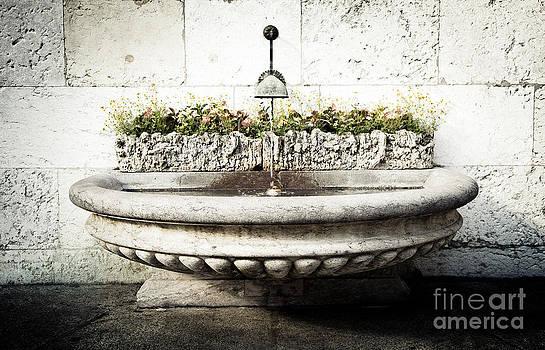 RicharD Murphy - Geneva Fountain 2