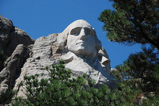 George Washington face  by Dany Lison