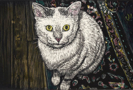 Georgie the Cat by Robert Goudreau