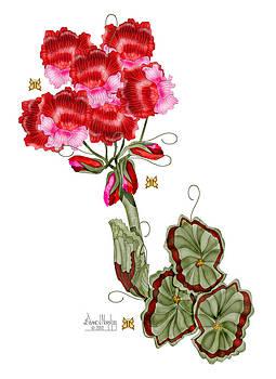 Geranium Sans Pot by Anne Norskog