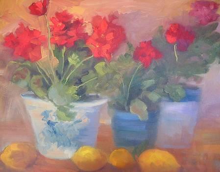 Geraniums and Lemons by Suzanne Elliott