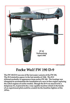German Fighter D Nine by Jerry Taliaferro