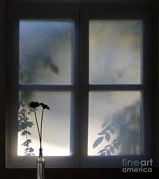 Ghent Window by Alex Rowbotham