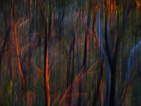 Michelle Wrighton - Ghost Trees at Sunset - Abstract Nature Photography