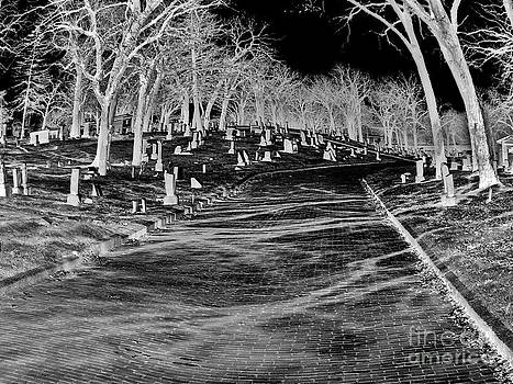 Ghost Walk by Stephany Knight