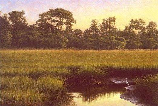 GICLEE Lowcountry Refuge by Michael Story