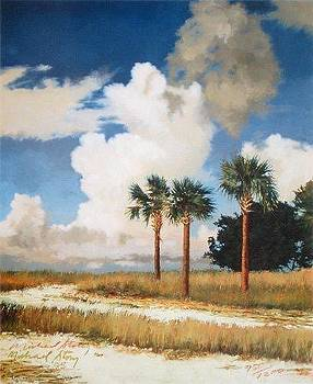 GICLEE Palmetto Sky by Michael Story