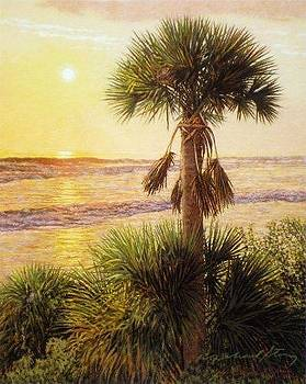 GICLEE Palmetto Sunrise by Michael Story