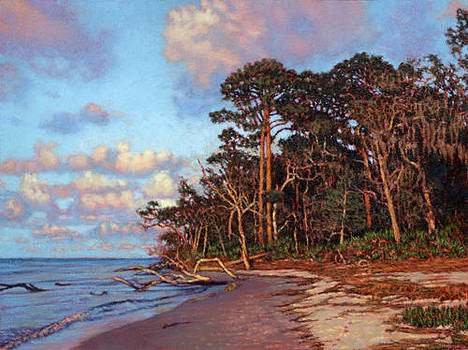 GICLEE Traversing Driftwood Beach by Michael Story