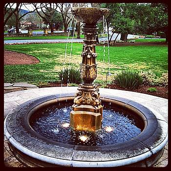 Gilded Fountain by Dawn Marie Black