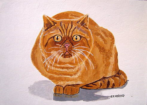 Ginger Cat by Eamon Reilly