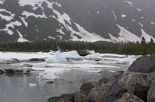 Glacial Wonders by Steven Colella