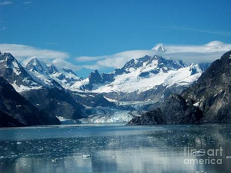 Glacier Bay National Park by Sandra McClure