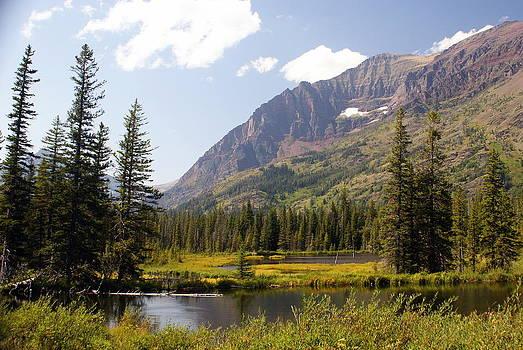 Marty Koch - Glacier Ponds