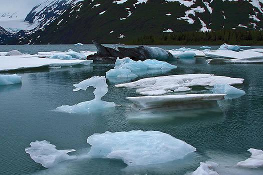 Wes and Dotty Weber - Glacier Remnants