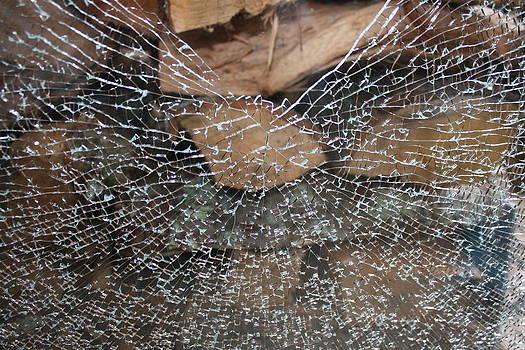 Annie Babineau - glass web