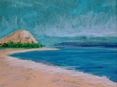 Glen Arbor Beach by Lisa Dionne