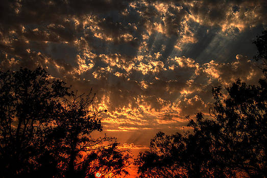 Glorious Sky  by Kelly Kitchens