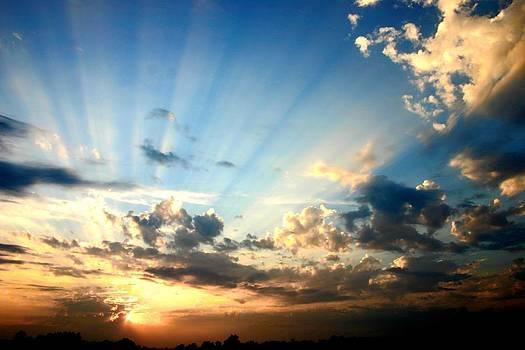Glorious Sunset by Stephanie  Tilmann