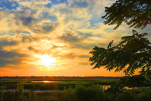 Glowing Sunset by Cathy Leite Photography