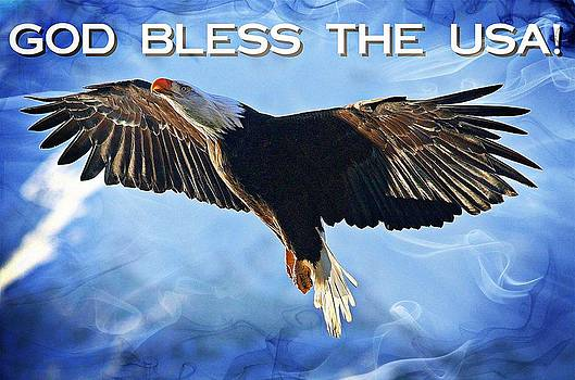 Carrie OBrien Sibley - God Bless The USA