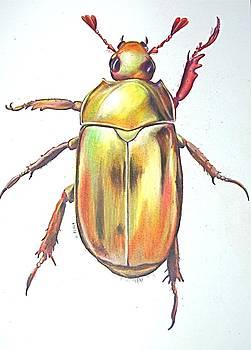 Gold Bug by Joan Pollak