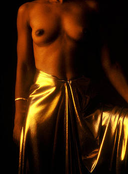 Stuart Brown - Gold Lame
