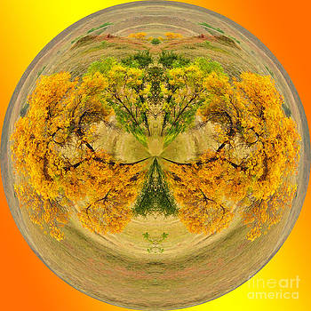 Golden Autumn by Whispering Feather Gallery