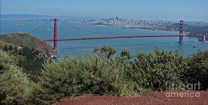 Golden Gate City 1 by Suze Taylor