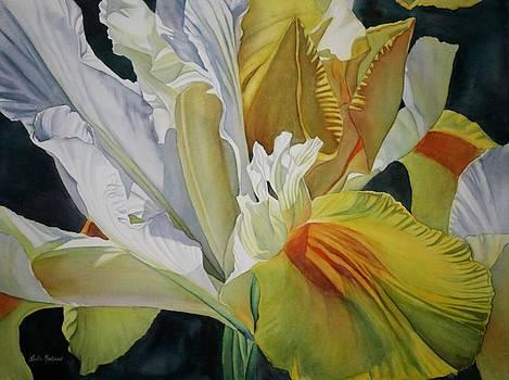 Golden Gem by Leslie Redhead