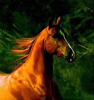 Golden Horse by Samwais Art