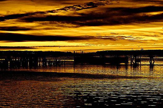 Golden Mornings In Portland Maine by Virgin Dyke