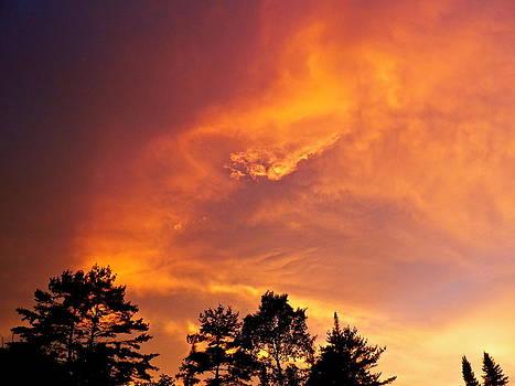 Golden rays by Gloria Warren