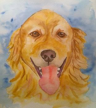 Golden Retriever by Stephanie Reid