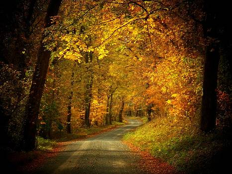 Golden Road by Joyce Kimble Smith