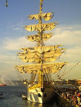 Golden Sails by Matthew Cummings
