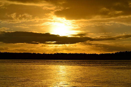 Golden skies by Naturae Sua