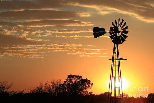 Golden Sky Windmill Sunset Silhouette by Robert D  Brozek