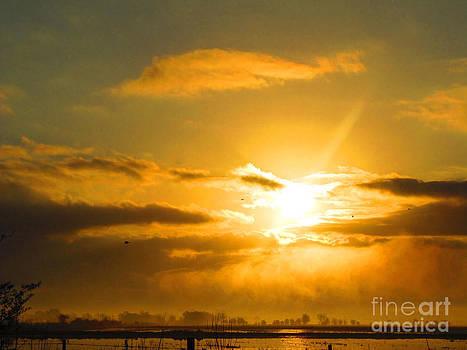 Golden Slumber by Shannon Hill