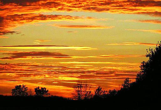 Golden sunset by Ian Flear