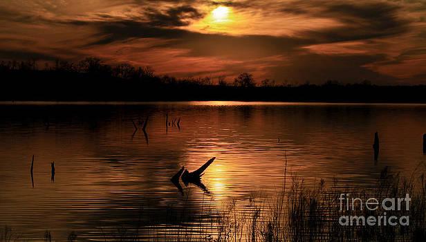 Royce  Gideon - Golden Sunset