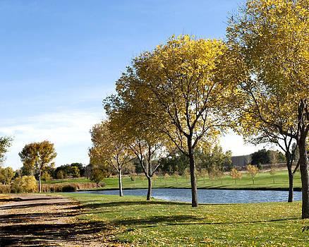 Margaret Fortunato - Golden Trees