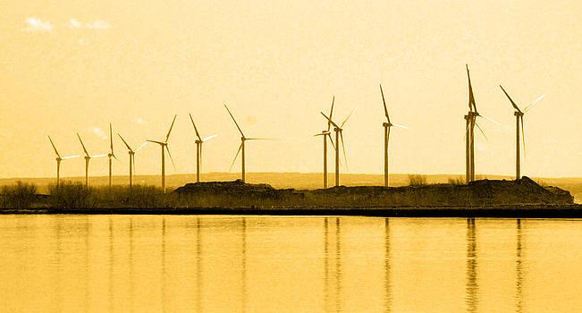 Golden Windmills by Beverly Kobee