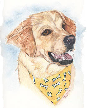 Golden with Bandana by Deb Gardner