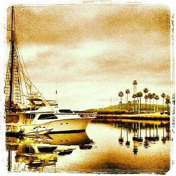 Good Morning From Long Beach! by Christy Borgman