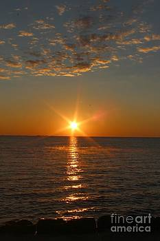 Good Morning Sunshine by Megan Wilson