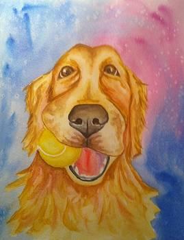 Goofy Golden by Stephanie Reid